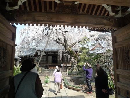inuyama1-3.jpg