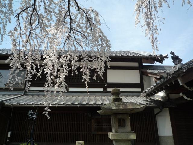 inuyama1-4.jpg