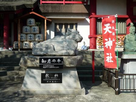tokushima2-2.jpg
