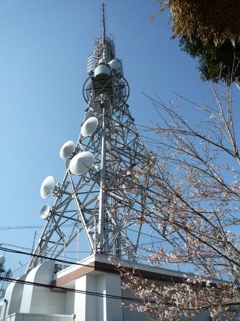 tokushima3-3.jpg